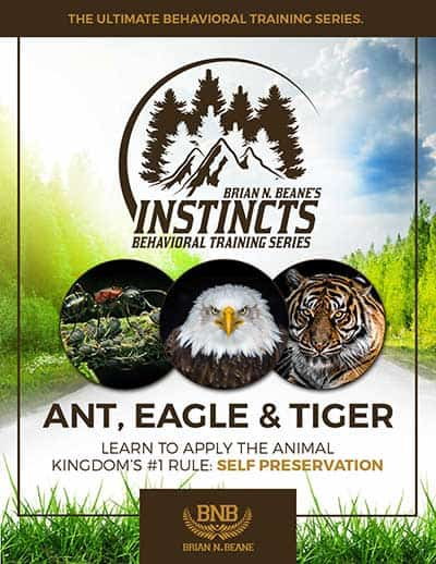 Instincts Series: Ant, Eagle, and Tiger